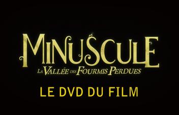 MinusLM_DVD